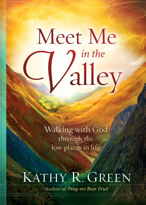 Meet Me in the Valley: Walking With God Through the Low Places in Life